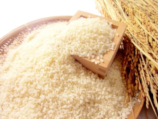 新潟県燕市が下町ロケットとコラボしたお米をふるさと納税お礼品に