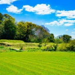 リタイア後は田舎暮らしか?「田舎あるある」で現実を知るべし